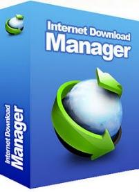 Download - Internet Download Manager 6.07 Final + Serial Baixar